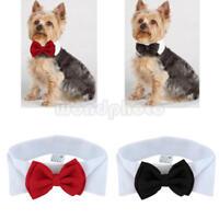 Halsband Schmuck Haustier Mode einstellbar Hundefliege Katze Fliege Krawatte