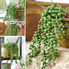 4pcs Artificial Hanging Plants Fake Succulents String of Pearls for Decor Home