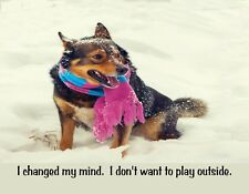 METAL FRIDGE MAGNET Dog In Snow Changed Mind Don't Want To Play Outside Humor