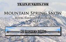 "TrainJunkies N Scale "" Mt. Spring Storm (No Trees) Backdrop 12x80"" C-10"
