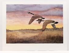 Vintage JIM HITESMAN Realism Canadian Geese Wildlife Birds Litho SIGNED #137T