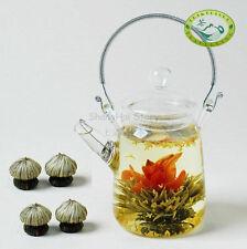 Glass Teapot Heat Resistant For Blooming tea 350ml/12oz + 4 Blooming Tea