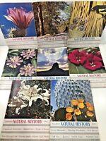 8 Vintage Natural History Magazines Lot Year 1947 Science History Ephemera 1940s