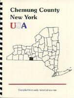 NY~CHEMUNG COUNTY~ELMIRA NEW YORK~REPRINT 1885 GAZETTE OUTLINE HISTORY~GENEALOGY