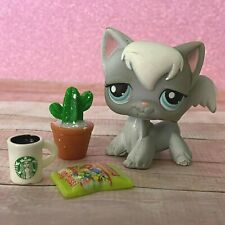 100% AUTHENTIC Littlest Pet Shop LPS #345 Grey Longhair Cat w Accessories