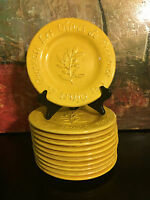 "1 Salad Plate Les Olives Embossed Yellow Sakura 8""  Williams Sonoma Italy Style"