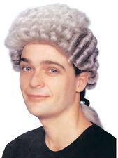 Grey Lawyer Judge Period Drama Wig Barrister Lawyer Fancy Dress Accessory New