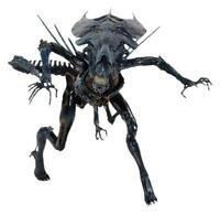 Aliens ~ 30-INCH DELUXE ALIEN QUEEN ACTION FIGURE ~ Aliens AVP Authentic NECA