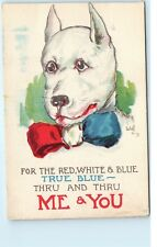 Patriotic Dog Red White Blue USA Bow Tie Me & You Vintage Wall Postcard D09