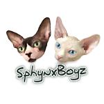SphynxBoyz