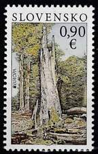 Slowakije postfris 2011 MNH 661 - Europa / Het Bos