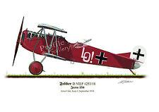 Fokker D.V11 Aircraft Profile Artwork Ernst Udet A4 Glossy Print WW1 signed