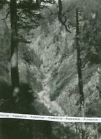 Spiegelau : Triftrinne  im Totengraben - Forstwitschaft - um 1925     V 2-21
