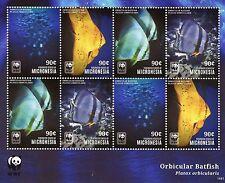 Micronesia 2014 MNH Orbicular Batfish WWF 8v M/S Fish Marine