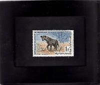 Framed Stamp Art - Collectible International Postage Stamp- African Wildlife