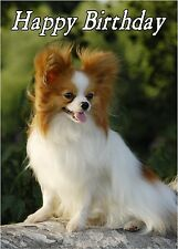 Papillon Dog Design A6 Textured Birthday Card BDPAP-7 by paws2print