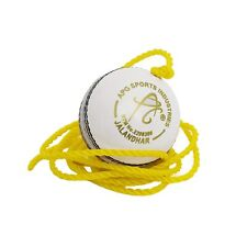 APG White Leather Cricket Hanging Ball for Practice and Bat Knocking Free Ship