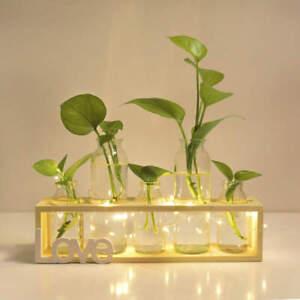 Hydroponic Plant Vases Glass Vase Vintage Bonsai Flower Pot Wooden Home Deco