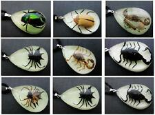 21 PCS Insect Pendant Mix Scorpion spider beetle Glow in Dark NG