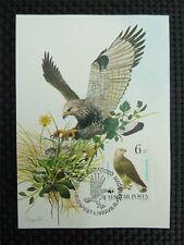 UNGARN MK VÖGEL GREIFVÖGEL BIRD OF PREY BUSSARD BUZZARD MAXIMUM CARD MC CMc3860