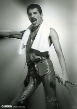 QUEEN POSTER FREDDIE MERCURY LIVE ON STAGE