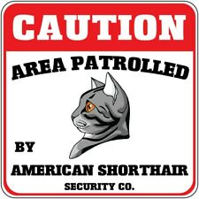 Aluminum Crossing Sign Area Patrolled by American Short Hair Cat Cross Xing
