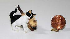 Dollhouse Miniature Cats Siamese Black White Rubbing Falcon Minis 1:12 Scale
