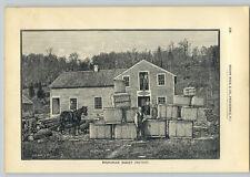 1890 PAPER AD 7 PG Brunonian Baskets Basket Factory White Ash Wood Oak Rawhide