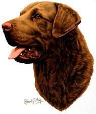 "Chesapeake Bay Retriever Dog Head on One Lg 18 x 22 "" Fabric Panel to Sew"