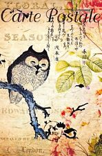 Postcard French Vintage Shabby Chic Style, Oriental Writing, Owl, Floral 14K
