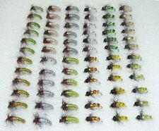 72 Artflies Micro Caddis Larva, Vinyl Back, Flash Ribbed, Bead Body, #16, [MC72]