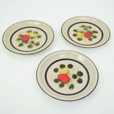 VTG Strawberries Stonewear Small Plate SET of 3 Freezer to Oven Made in Japan