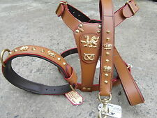 STAFFORDSHIRE BULL HARNESS,LEAD,&COLLAR,SET, welsh dragon in Brown LEATHER