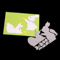 Stanzschablone Hase Oster Vogel Weihnachten Hochzeit Geburtstag Album Karte DIY