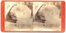 Stereoview ~ Chip of the Old Block, Original Big Tree  E & H T Anthony c1870s