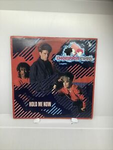 THOMPSON TWINS~ HOLD ME NOW~ 12 INCH 45 ~ TOP AUDIO