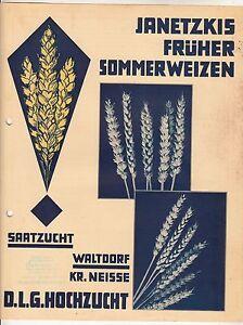 Reklame Blatt Janetzkis früher Sommerweizen Waltdorf Kr. Neisse Schlesien 1935er