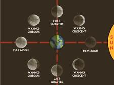 MOON PHASES CYCLE GLOSSY POSTER PICTURE PHOTO BANNER sun moon orbit lunar 4214