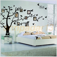 Family Tree Bird Wall Sticker Photo Picture Frame Removable DIY Room Decal Black