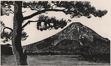 ANNE JOPE RE SWE (b1945) Signed Woodcut MOUNT FUJI JAPAN 1976