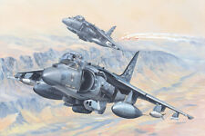 HOBBY BOSS 1/18 av-8b HARRIER II #81804
