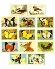 Vintage 1960s SHELL OIL Butterfly & Bird Series Discover Australia Trading Cards