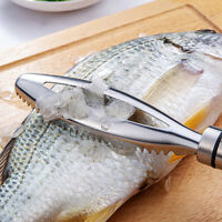 Fish Scales Skin Brush Scraping Cleaning Tool Graters Fish Cleaning Peeler DD