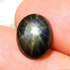 Certificate! 5.76 CT. Natural Unheated Black Star Sapphire 12 Rays Cabochon