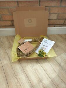 Willow Weaving Craft Kit -  make your own bird feeder