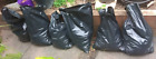 Bagged Soil (Collection from South Oxhey)