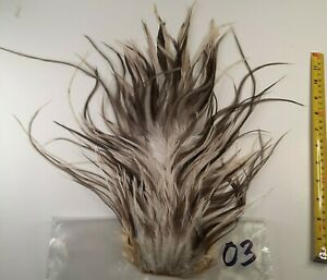 White Blue Dun Splash Rooster Saddle Hackle Long Thin Dry Fly Tying Feathers 03