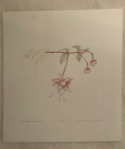 """Beth Van Hoesen """"Fuchsia in Hand"""" 1988  Color Etching, Signed, 10/40"""
