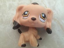 Littlest Pet Shop RARE Cocker Spaniel Dog Puppy #575 Dipped Dark Chocolate Star