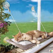 Cat Bed Hammock Window Perch Seat Mounted Shelf 45 Lbs Kitty Sofas Bolster Sleep